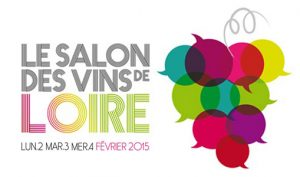 salon-vins-de-loire-2015-angers-675x300